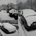 Lost in Schnee
