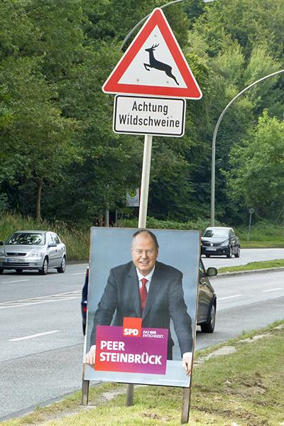 Steinbrück Peer Wahlplakat Schild Wildschweine