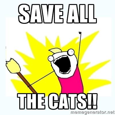 saveallthecats