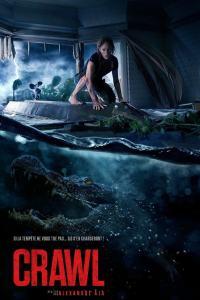 Infierno en la Tormenta (2019) HD 1080p Latino