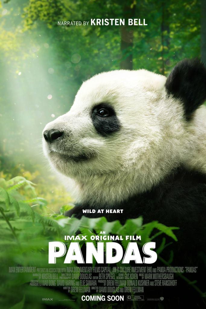 Pandas: El camino a casa (2018) HD 1080p Latino