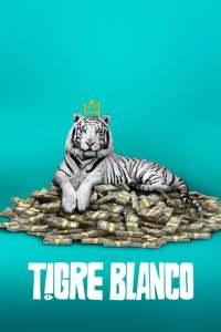 Tigre Blanco (2021) HD 1080p Latino