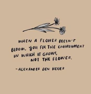 flower-700x727