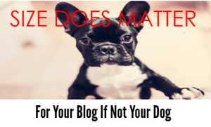 blog length is important to SEO