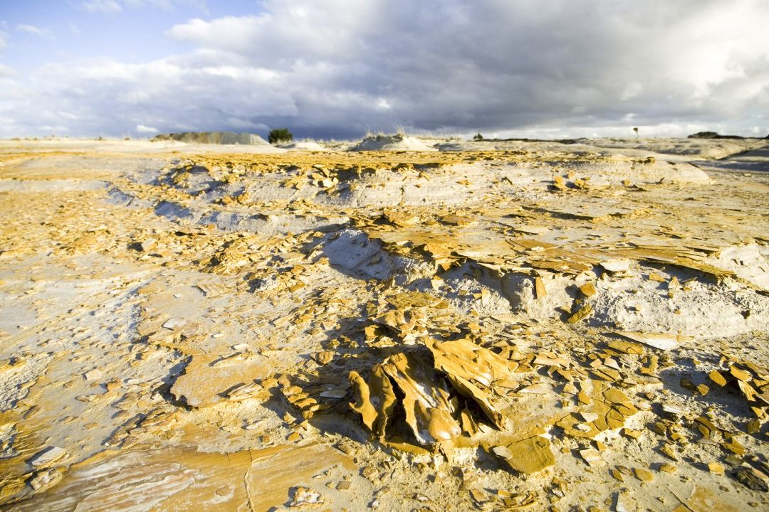 Land left bare from gold mining