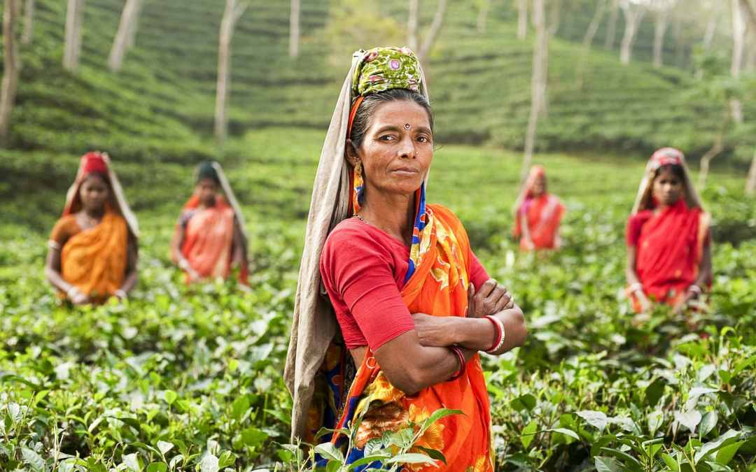 Women at Work in Global Supply Chains