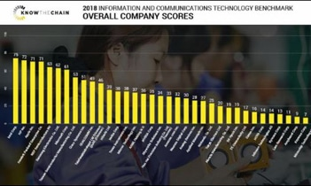 Benchmark Report in Technology Sector