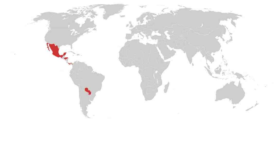Melon Commodity Risk Map