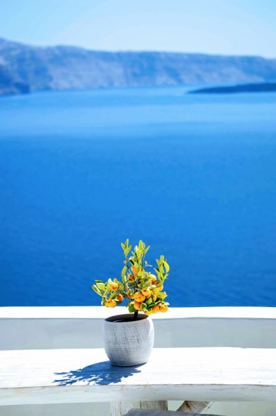 Famous Oia Blue sea view - Honeymoon Part 2 - Oia in Santorini Greece is beautiful with its pretty caldera view, sunsets, windmills and quaint pedestrian streets, we headed here for our Honeymoon Part 2! - Greek Island, Europe - Veritru