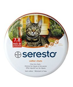 Seresto Collier antiparasitaire pour chats
