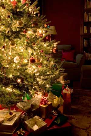 Fijne feestdagen en een gelukkig nieuwjaar