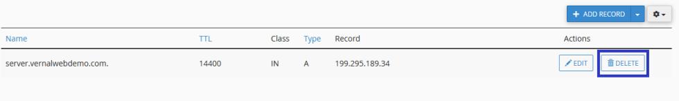 Delete DNS Record