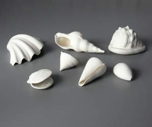 Set of seven porcelain shells, Veronica Wilton
