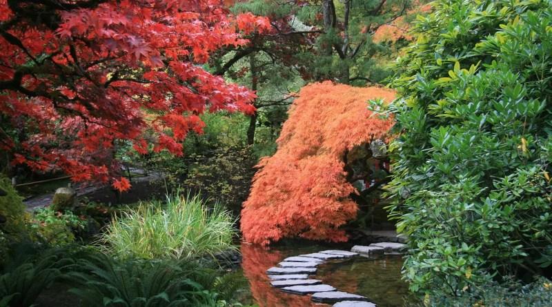 comment réaliser un jardin japonais