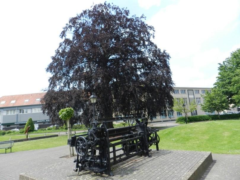 Ronse - weefgetouw en 200 jaar oude beuk in De Vrijheid