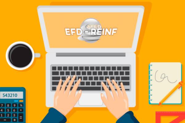 O que é oEFD-Reinf?