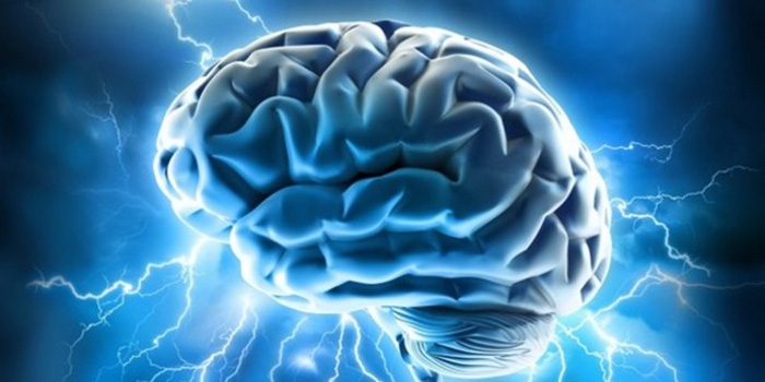Groundbreaking study establishes link between the brain and immune system