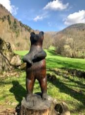 Bill, l'Ours