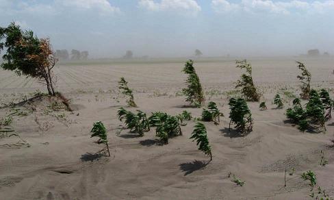 Figure 2. Force érosive du vent dans un champ non protégé.