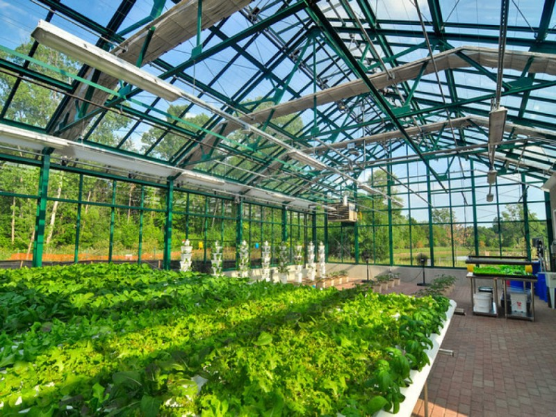 https://verticalhydrogarden.com/3-ways-to-contro…n-the-greenhouse/