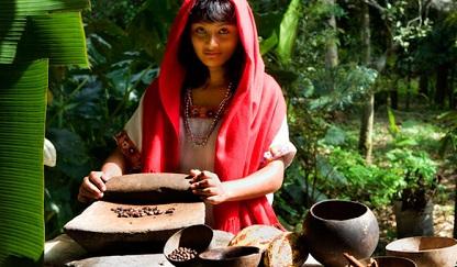 Cacao mexicano, fuente de nutrición, salud y belleza 2018