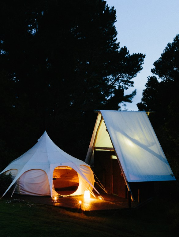 Wild Forest Glamping