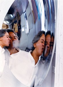 Anish Kapoor: belying stereotypes