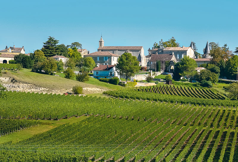 The vineyards of Saint-Emilion, France