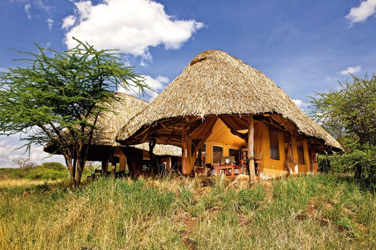 Luxury tents at the Lewa Safari Camp