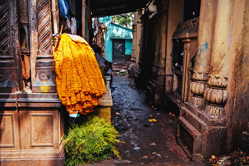 The Hooghly and Mullick Ghat Flower Market, Strand Road, Kolkata