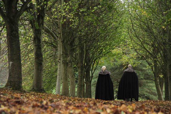 Lime tree tunnel walk at Winterfell