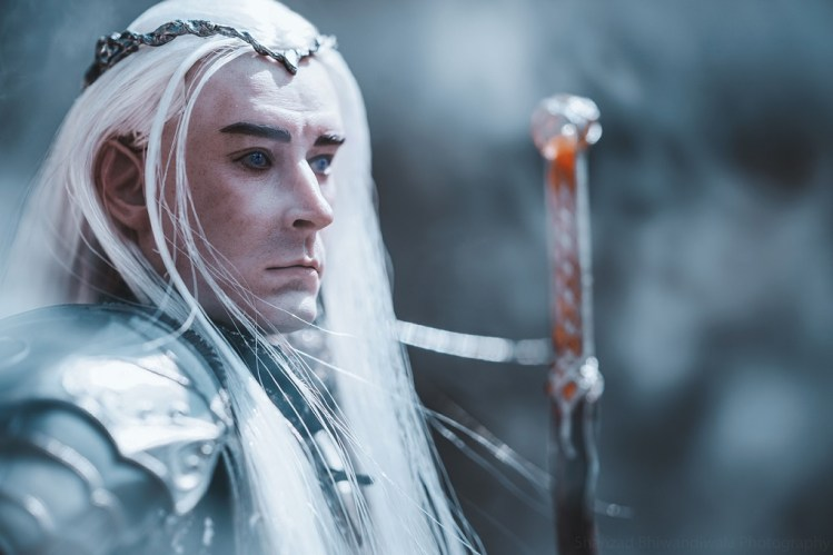 Thranduil from Lord of the Rings
