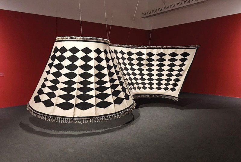 Flying Rug by Chandrashekhar Bheda with Mahender Singh, 2015