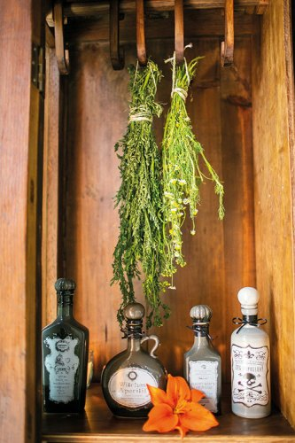 Herbs and potions for the Slow beauty rituals