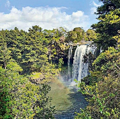 Rainbow Falls, Kerikeri Village.