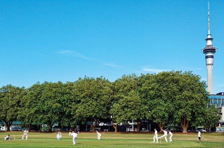 Cricket in Victoria Park
