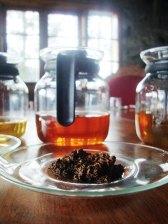 Tea tasting tours