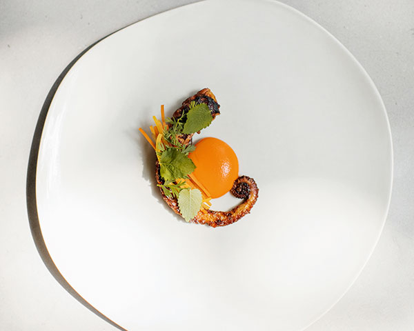 Pulpo (Octopus), Chintextle, Pickled carrot, Pujol
