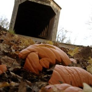 Shattered pumpkin