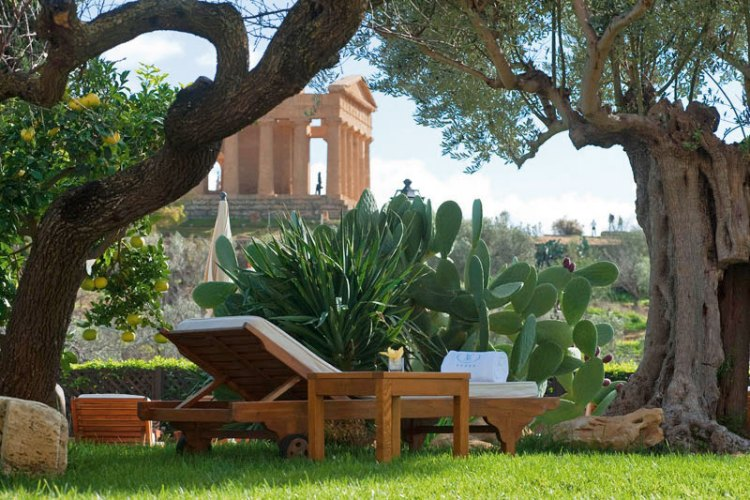 A verdant patch in Villa Athena