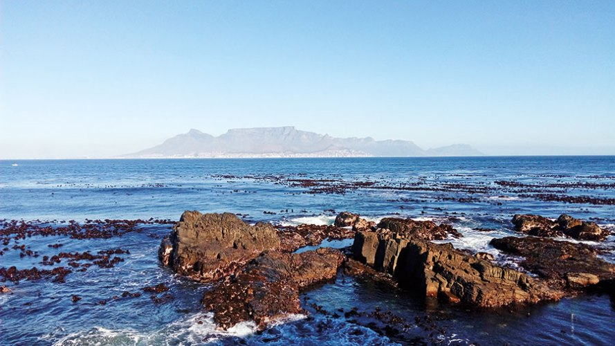 The view from Robben Island