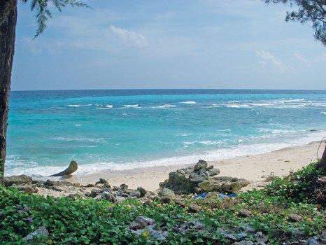 The Car Nicobar beach