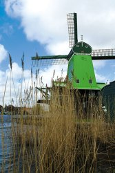 Zaanse Schans: Windmills on the mind