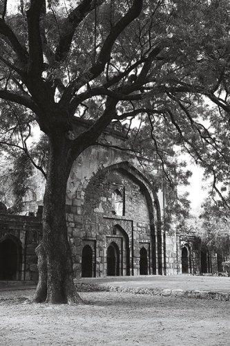 Ancient Walls in Lodhi Garden