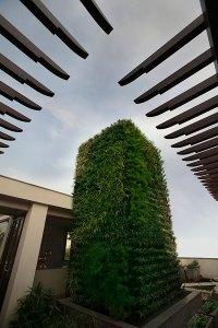 The vertical herb garden