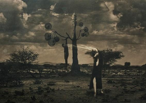 Zahra Yazdani, The Forbidden Lands