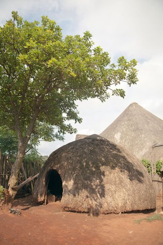 A replica of the traditional thatched hut of the Zulu people