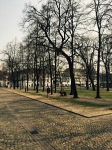 Walking around Basel