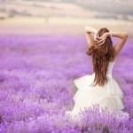 Heaven Scent fragrances