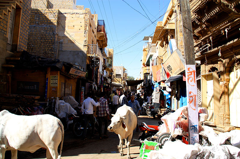 Typical vivacity that makes up Jaisalmer